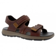 clarks brixby shore dark brown leather 26131549