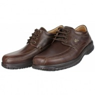 boxer shoes 14723 brown