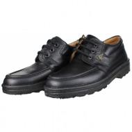 boxer shoes 01532