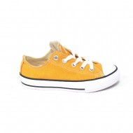 converse all star chuck taylor 351178c